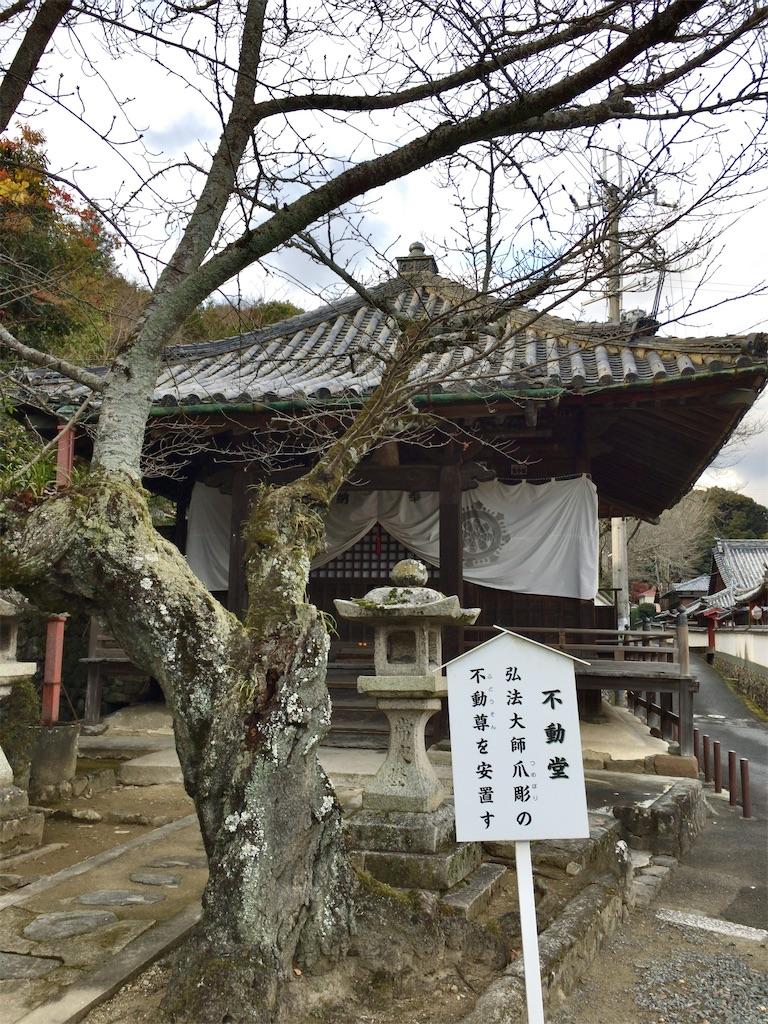 f:id:minghuabj:20201222011034j:image
