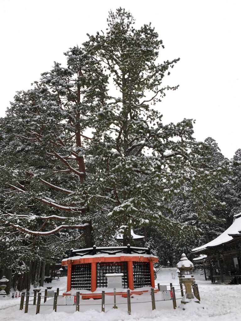 f:id:minghuabj:20210103205029j:image