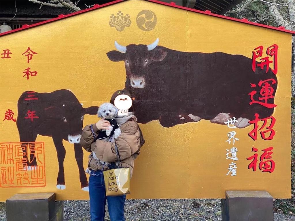 f:id:minghuabj:20210103220428j:image