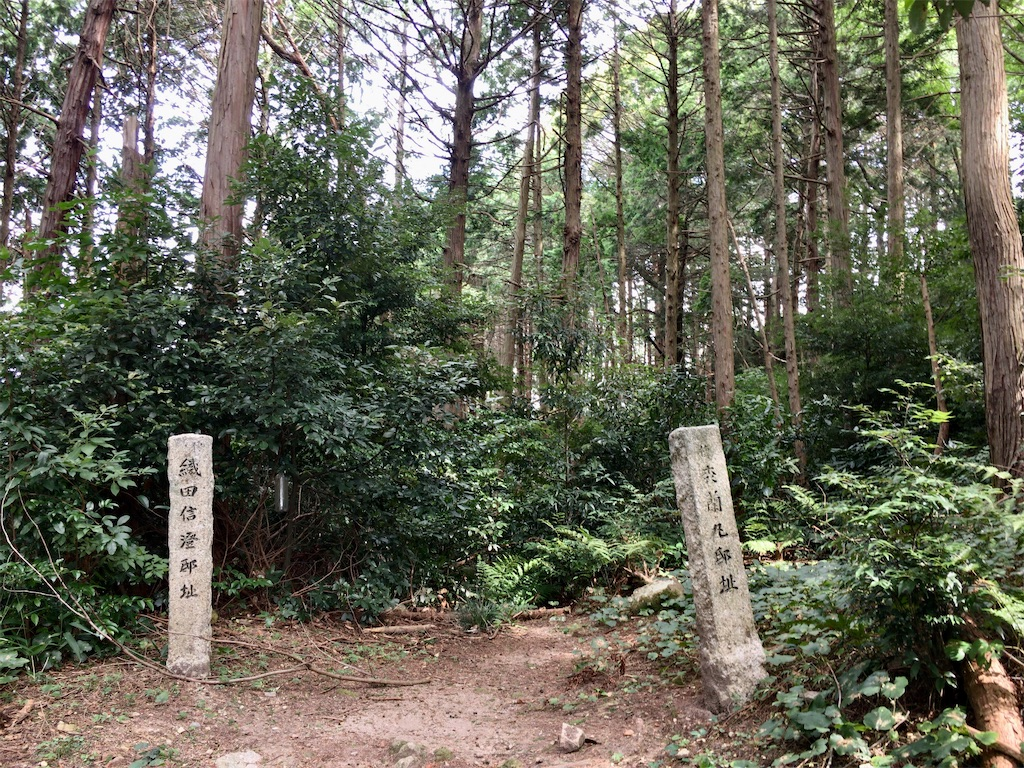 f:id:minghuabj:20210828204538j:image
