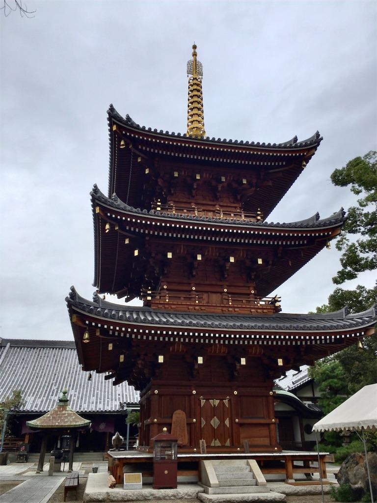 f:id:minghuabj:20211002220449j:image