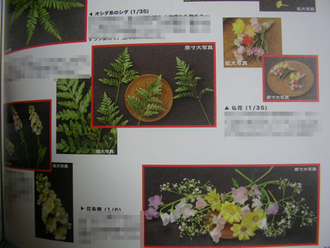 星野志眞子さんの超絶技巧を垣間見る!書評:『パンツァーグラフ! Vol.14』