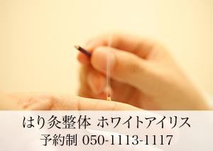 はり灸整体 ホワイトアイリス 予約制 050-1113-1117
