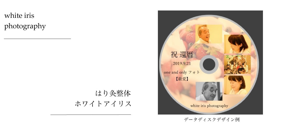 データディスクデザイン例
