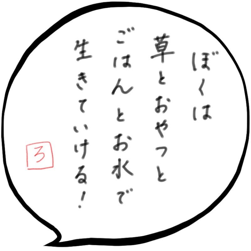 f:id:minimalist6:20210223123625j:plain