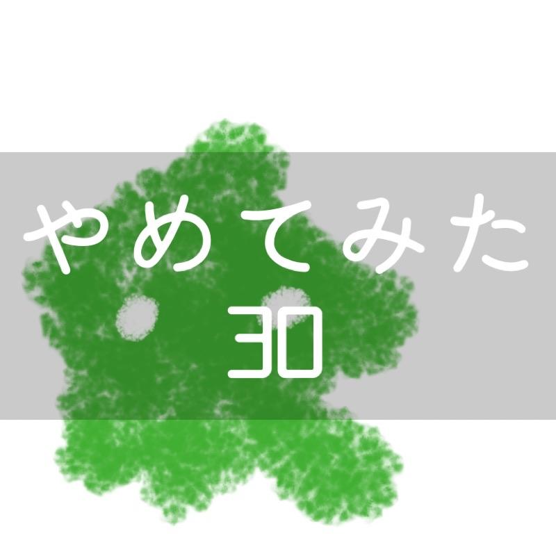 f:id:minimalist6:20210315080300j:plain