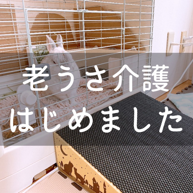 f:id:minimalist6:20210429115417j:plain