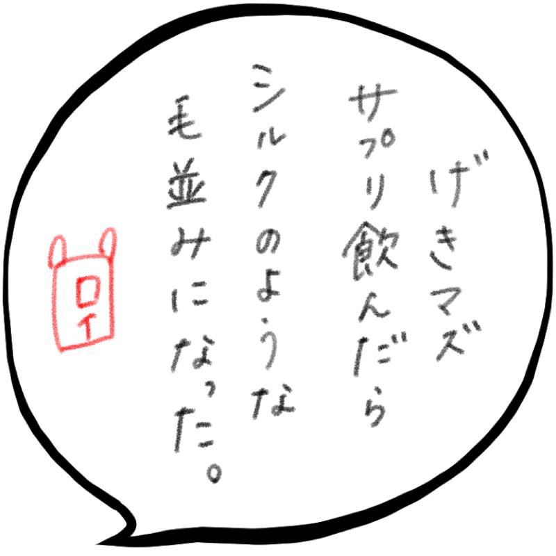f:id:minimalist6:20210429115610j:plain
