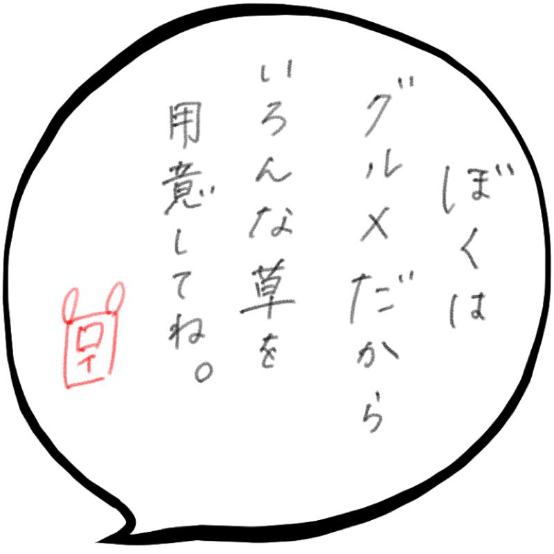 f:id:minimalist6:20210602145441j:plain