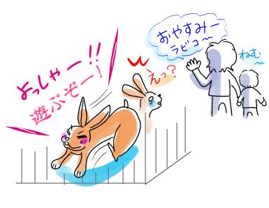 うさぎの日常☆2