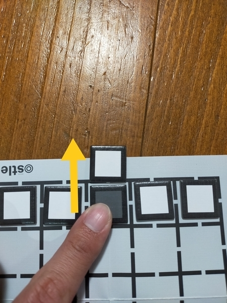 f:id:minipinmamekichi:20210130162951j:plain