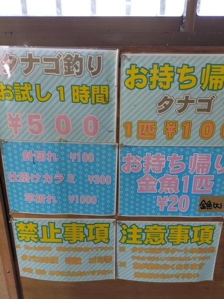 f:id:minipinmamekichi:20210303212237j:plain
