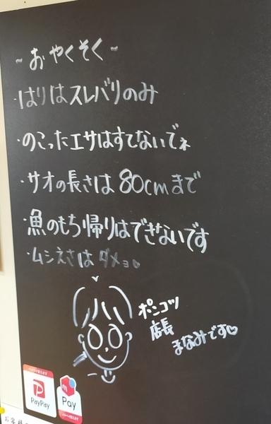 f:id:minipinmamekichi:20210305215339j:plain