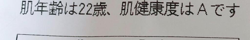 f:id:miniroom:20190210232459j:plain
