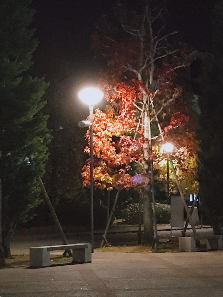 f:id:minnadekakumeiwookosou:20191127184942j:image