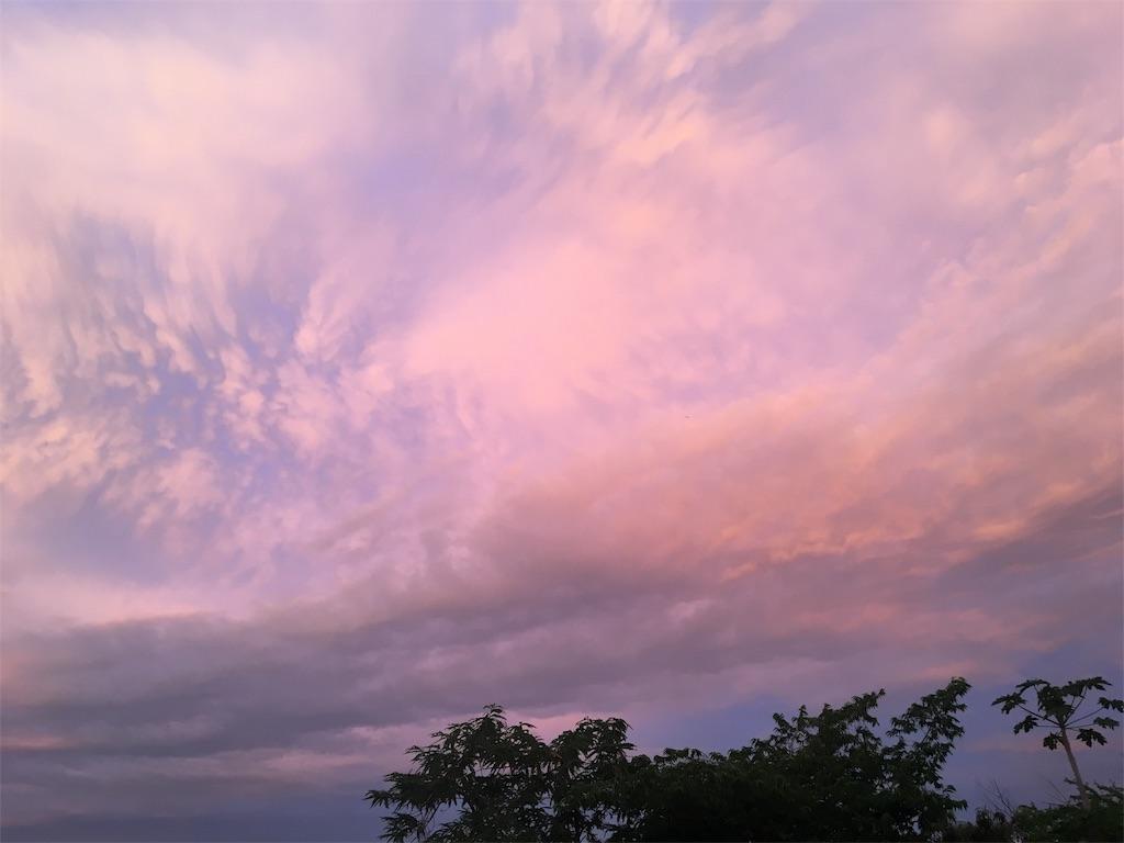 f:id:minoconoyama:20190210053156j:image