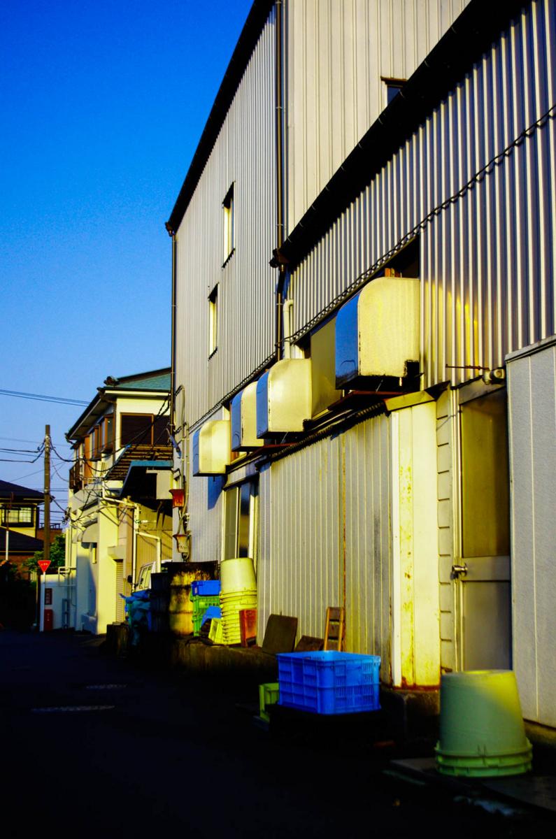 平塚市とアジサイを(ポタリング6月と街角の自然)