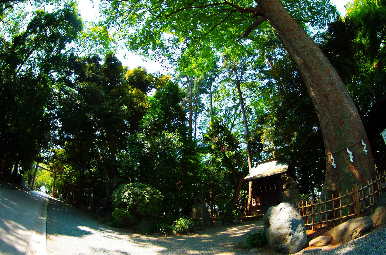 smc PENTAX-DA FISH-EYE 10-17mm F3.5-4.5
