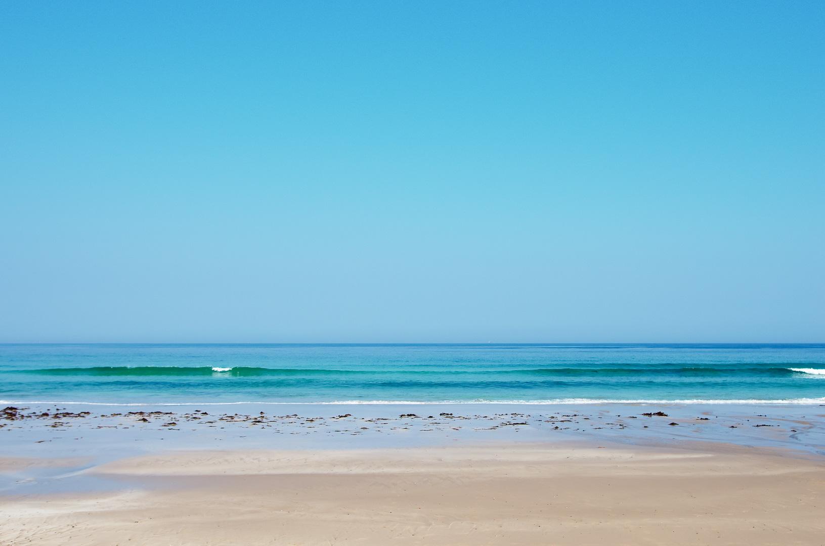 伊豆白浜海岸で撮りました