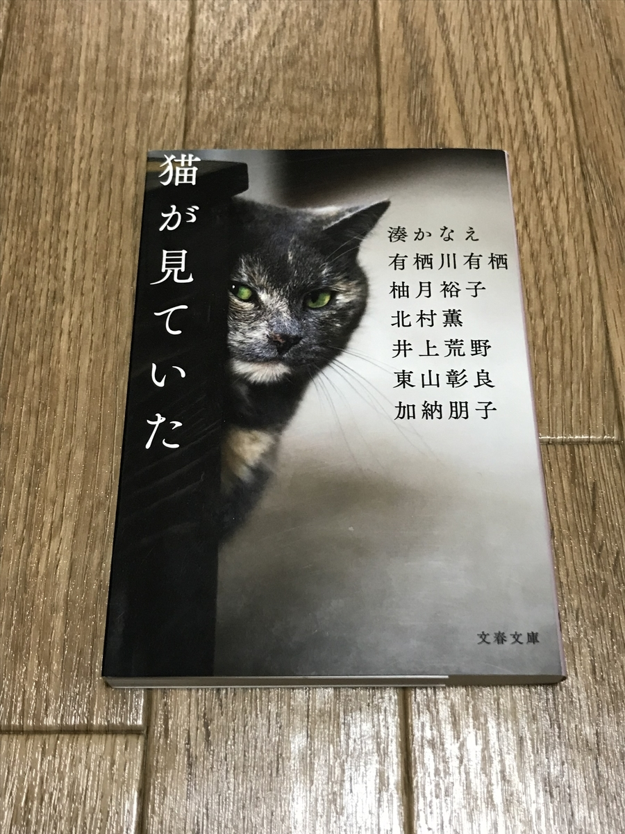 f:id:minotake1106:20190626151554j:plain