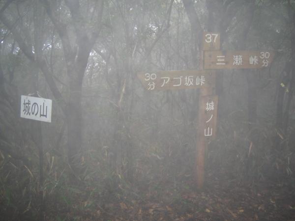 20101010184627