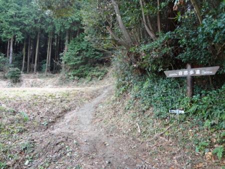 f:id:mint0606:20121229213611j:image