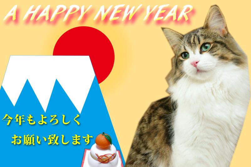 f:id:mint_shian:20170102183414j:plain