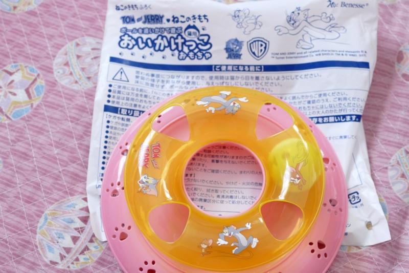 f:id:mint_shian:20170209155244j:plain