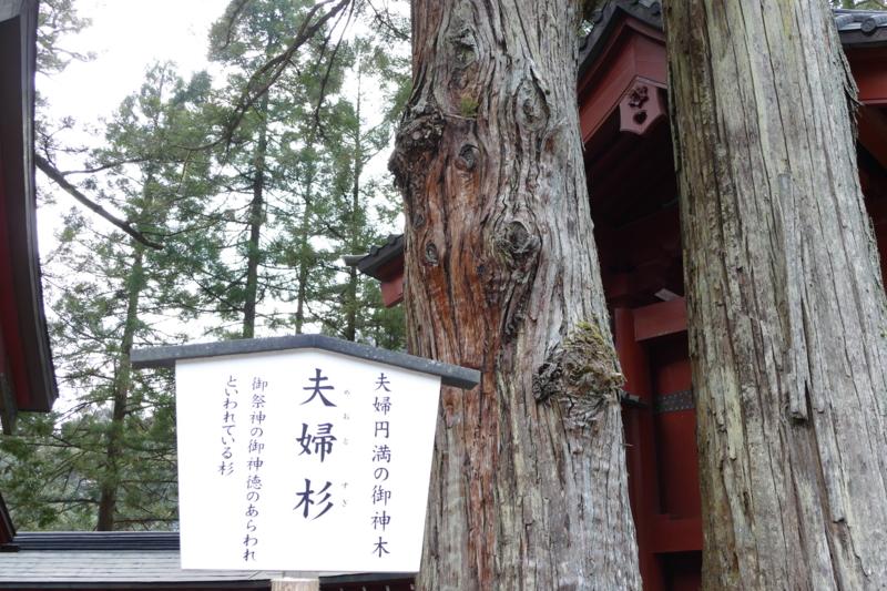 f:id:mint_shian:20170323164210j:plain