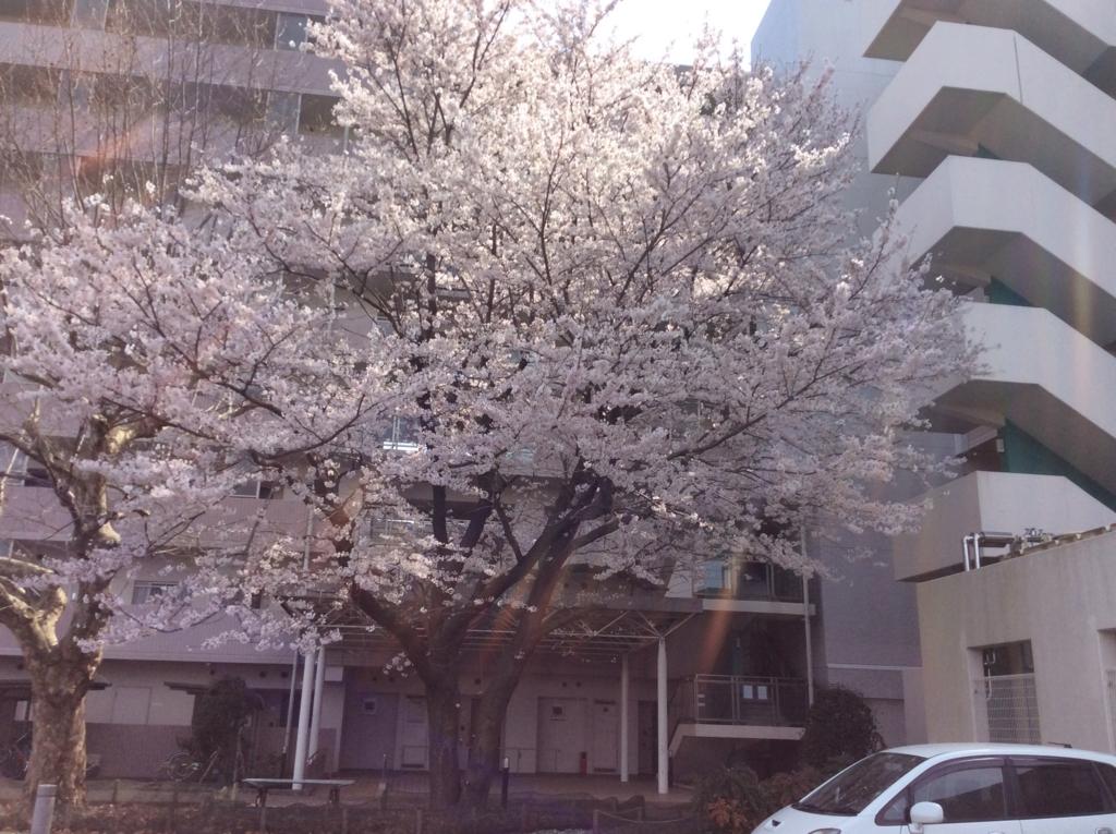 f:id:mintsuchi:20160816135346j:plain