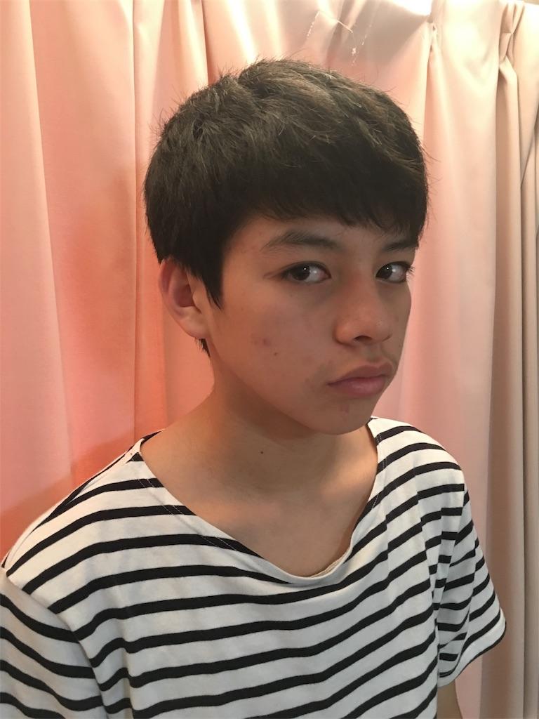 f:id:mintsuchi:20171217153926j:image