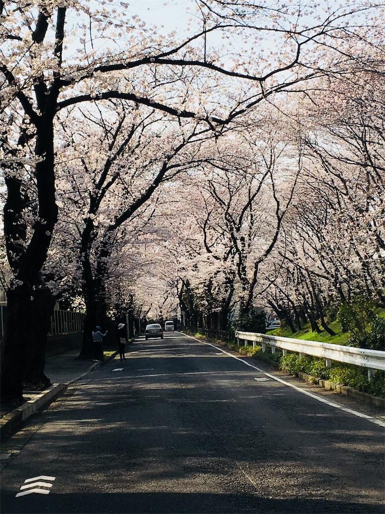 f:id:mintsuchi:20180327151126j:image