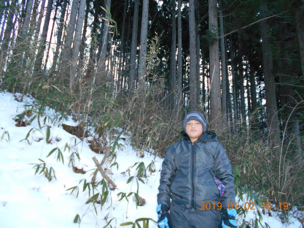 f:id:mintsuchi:20190107143842j:plain