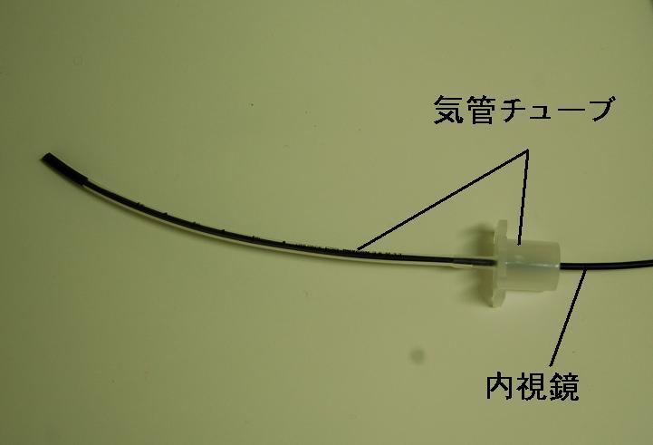 f:id:minvet:20120112175342j:image