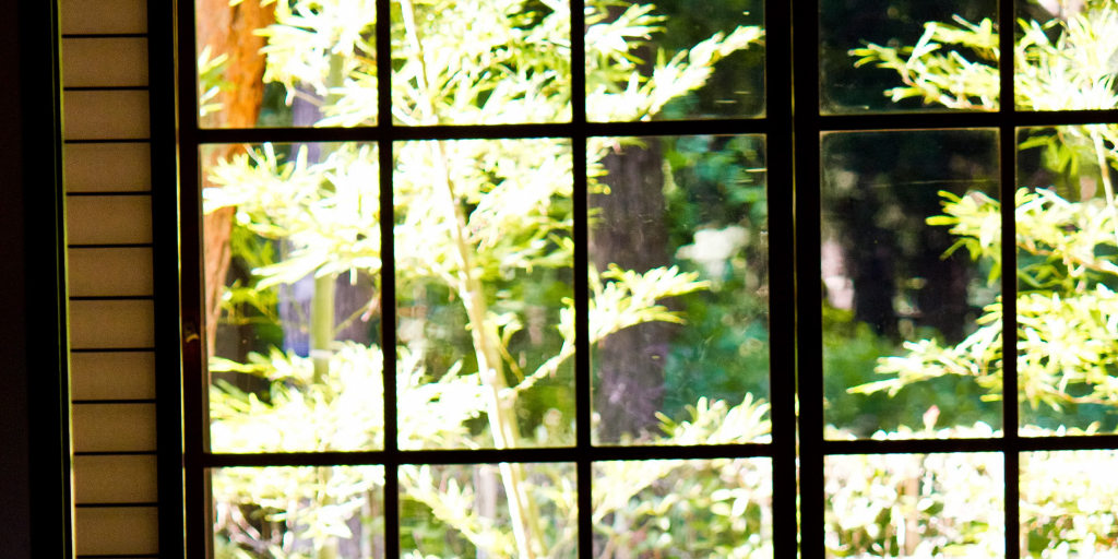 和室から見た窓の外。差し込む光に希望を見る。
