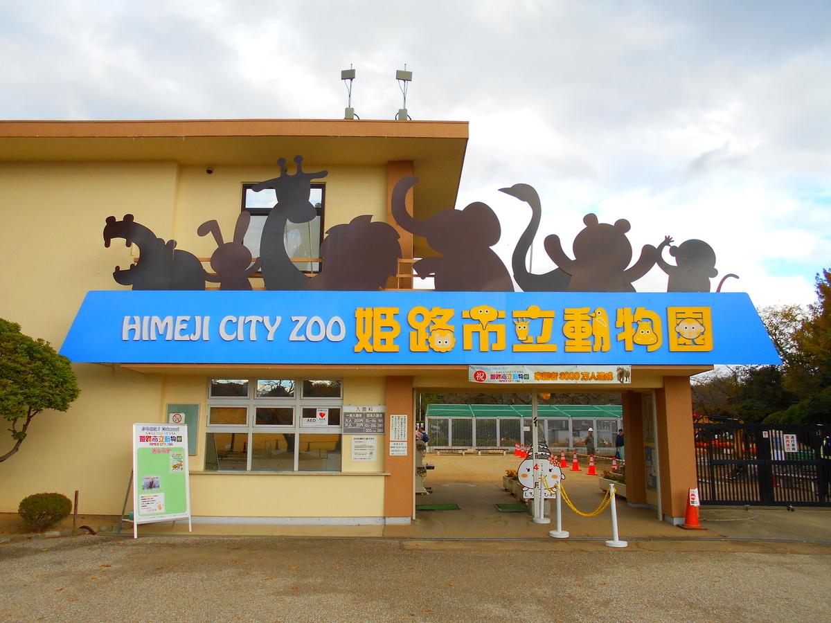 f:id:mion-zoo:20190504173057j:plain