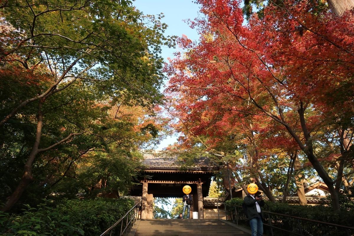 鎌倉紅葉画像
