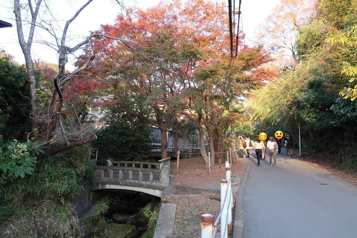 鎌倉の紅葉2画像
