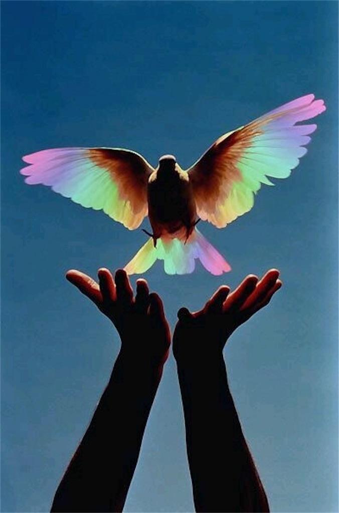 f:id:miracle7angel:20191015135914j:image
