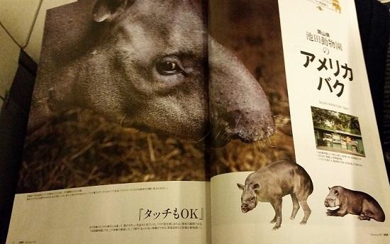 f:id:miracle_nurumayu:20170723152128j:plain