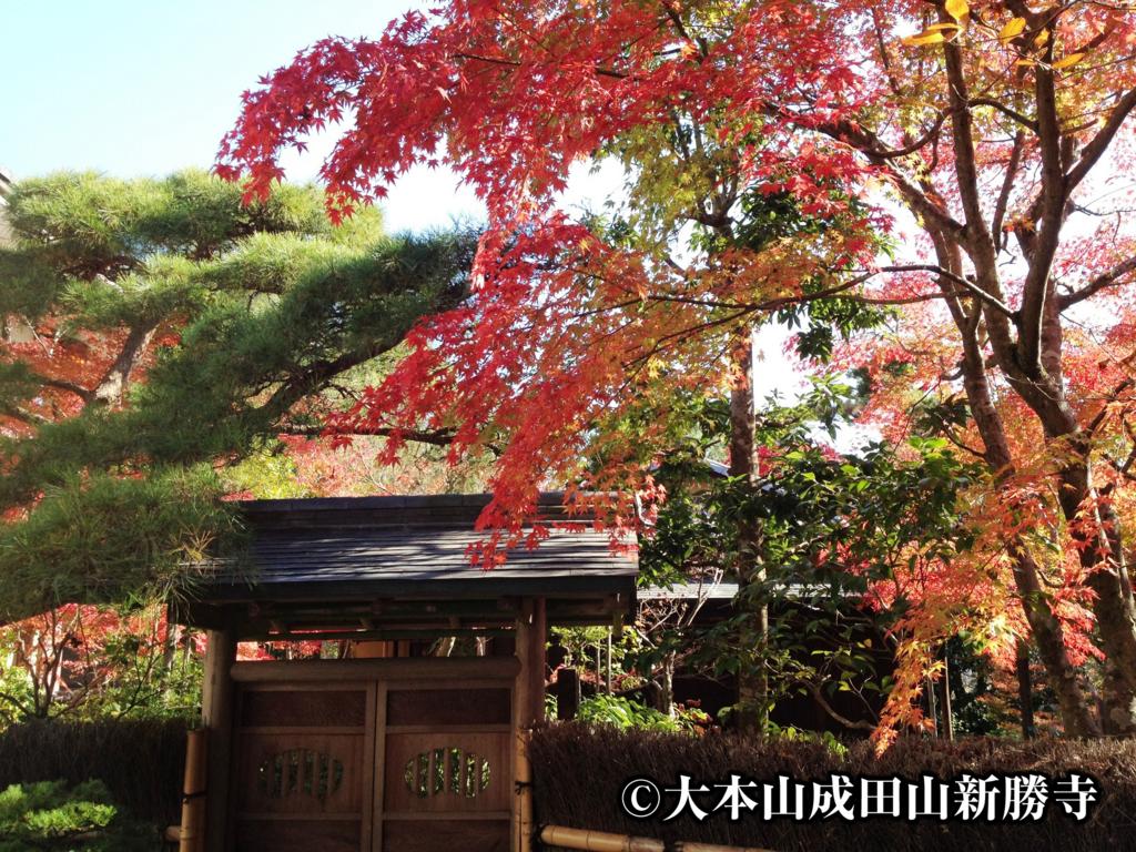 成田山公園を英語で紹介