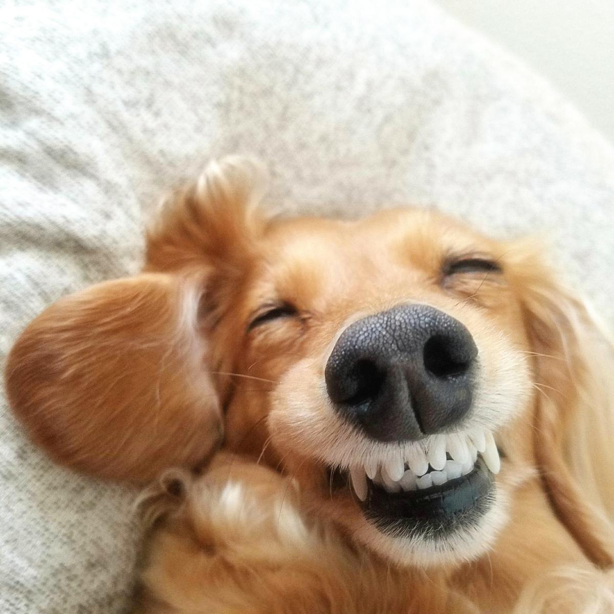 笑わない男