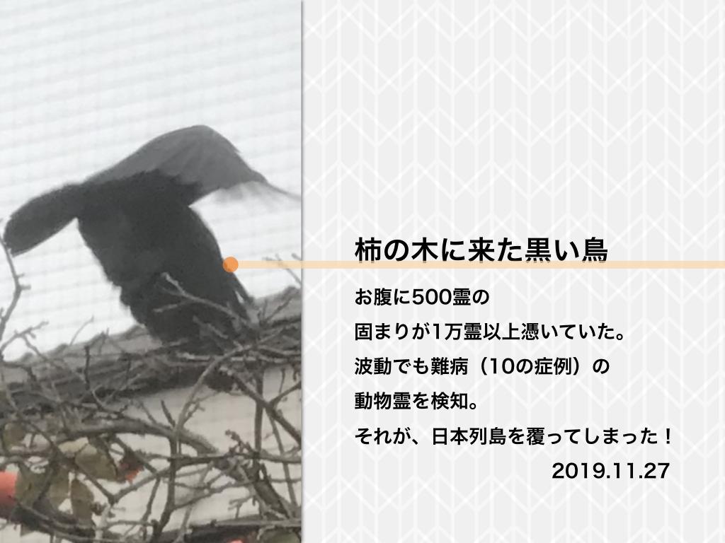 f:id:mirai-hadou:20191211070305j:plain