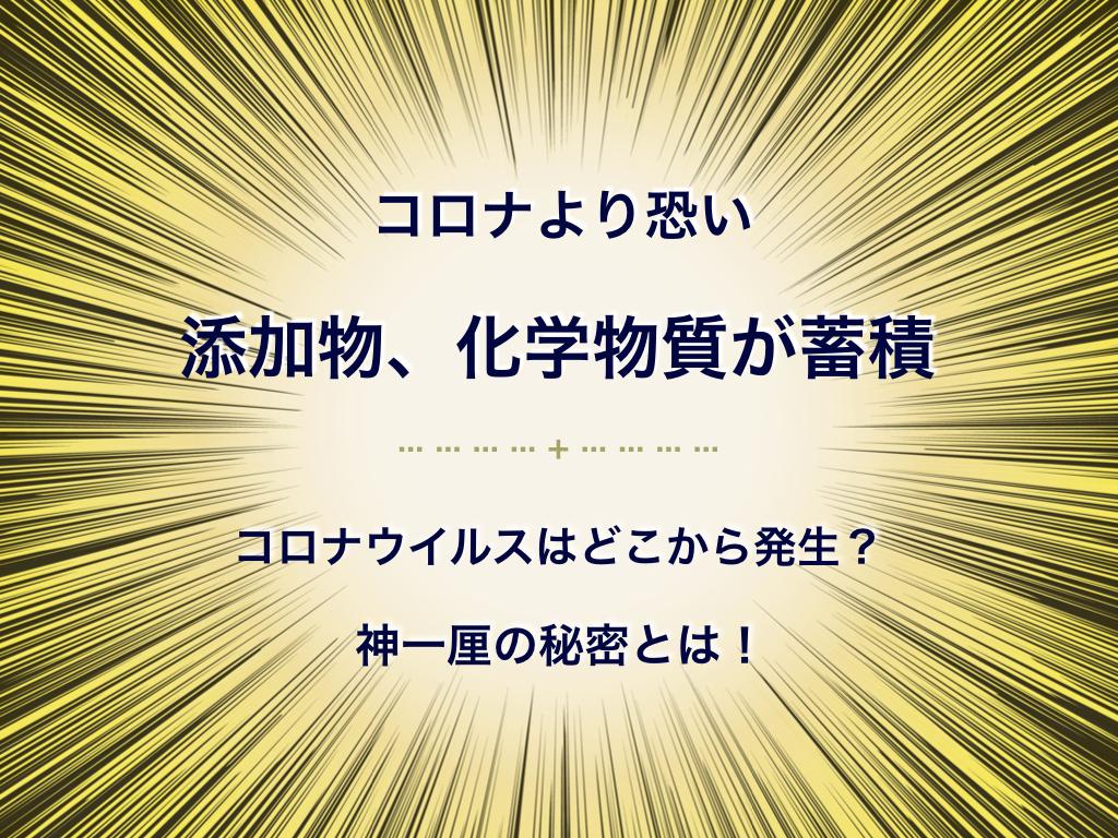 f:id:mirai-hadou:20200329224726j:plain