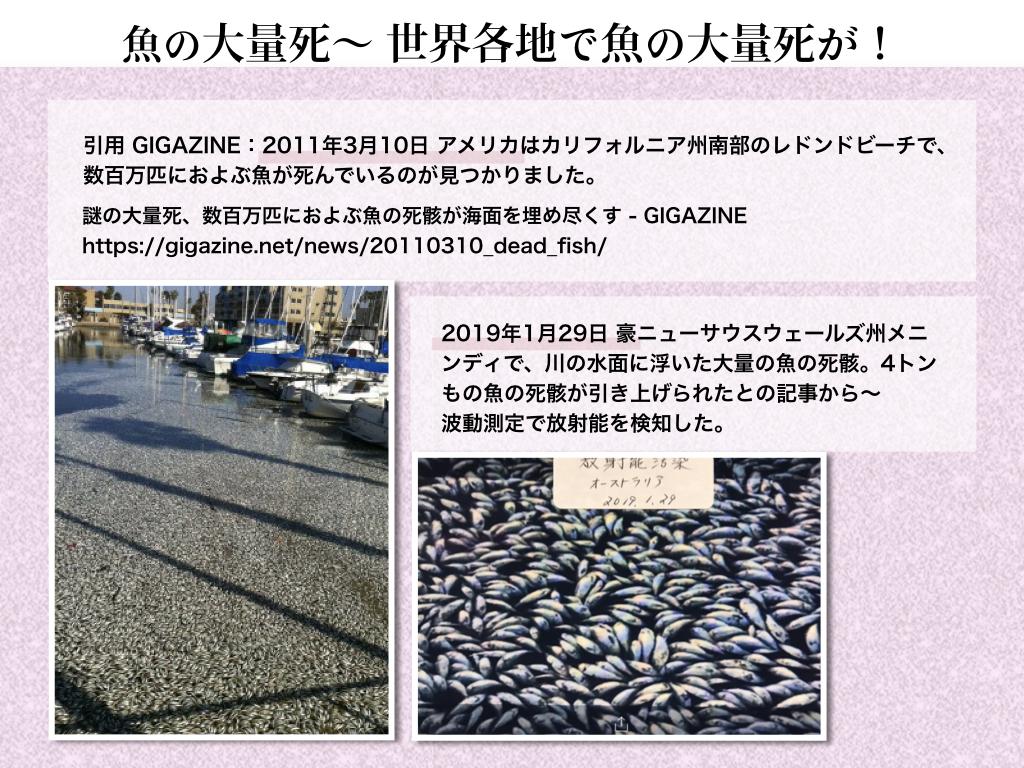 f:id:mirai-hadou:20200407170508j:plain