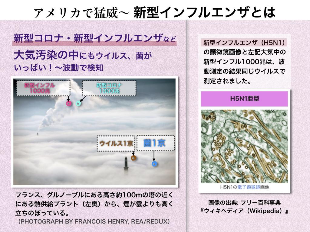 f:id:mirai-hadou:20200416001006j:plain