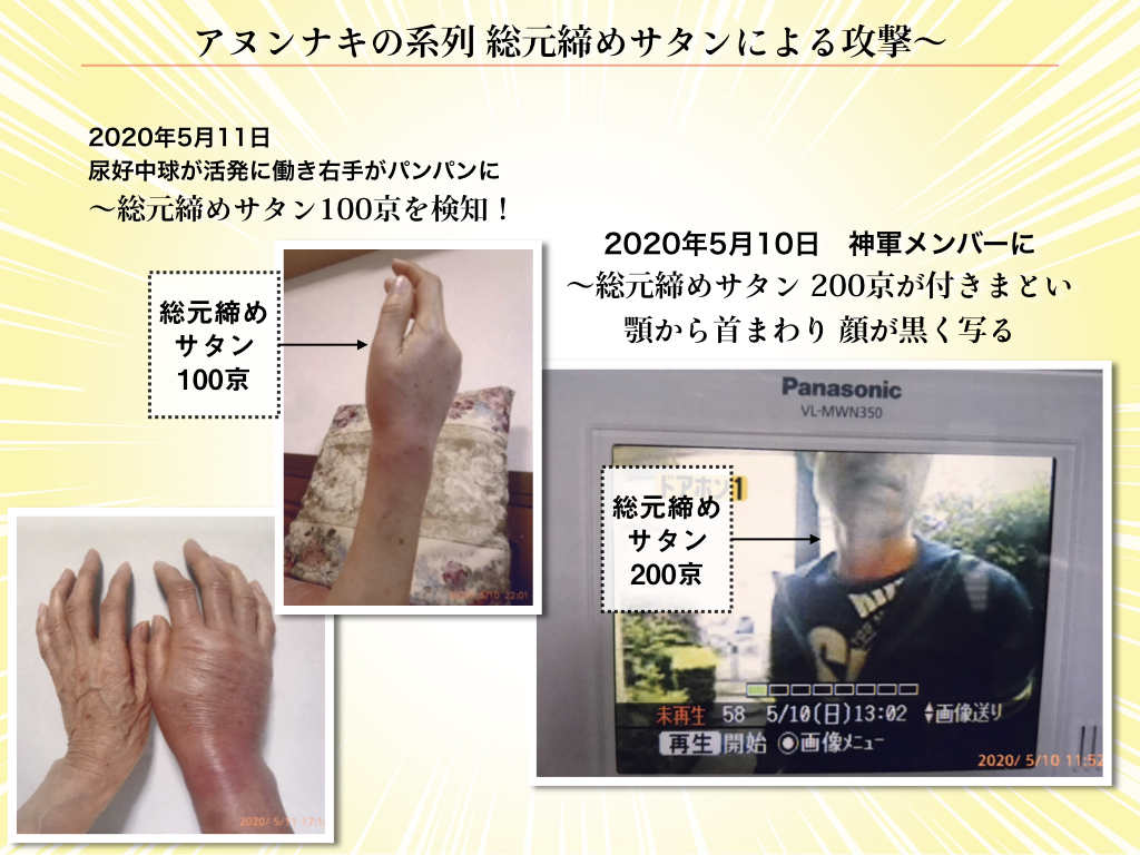 f:id:mirai-hadou:20200512195546j:plain