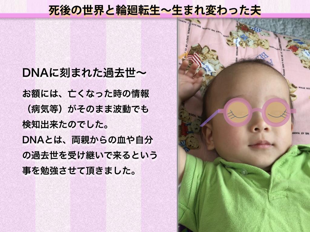 f:id:mirai-hadou:20200819193157j:plain