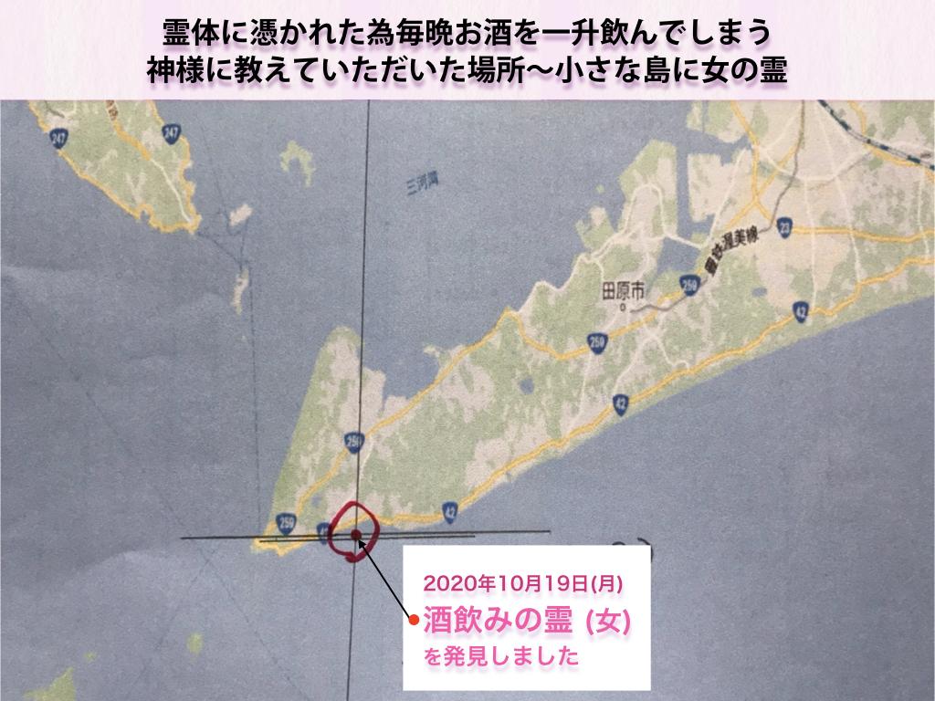 f:id:mirai-hadou:20201022130429j:plain