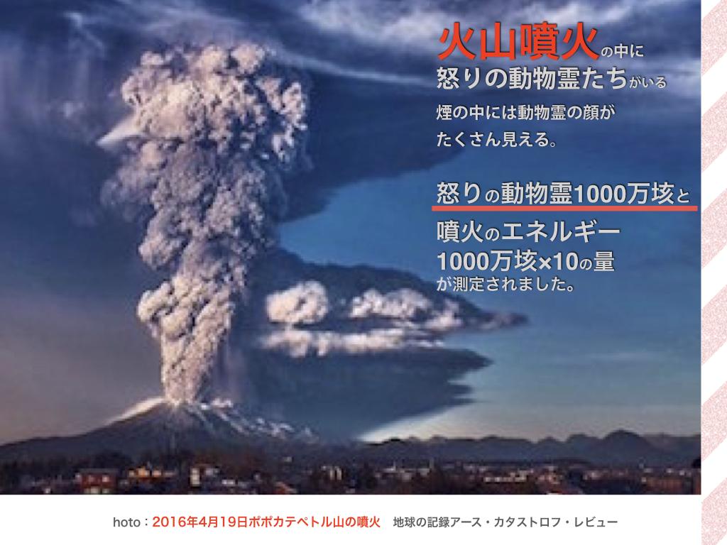 f:id:mirai-hadou:20201209204405j:plain